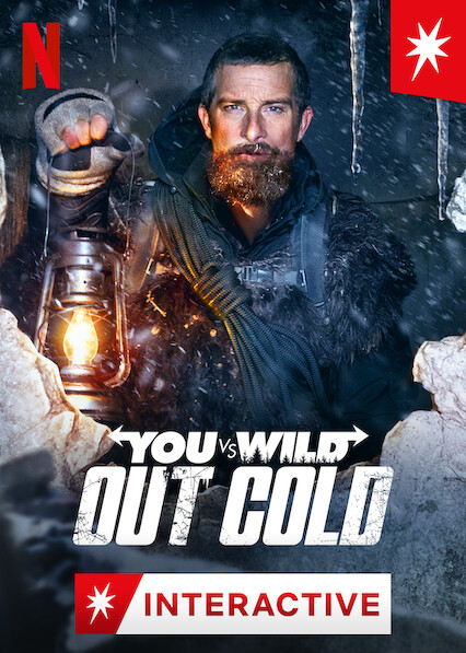 You vs. Wild: Out Cold